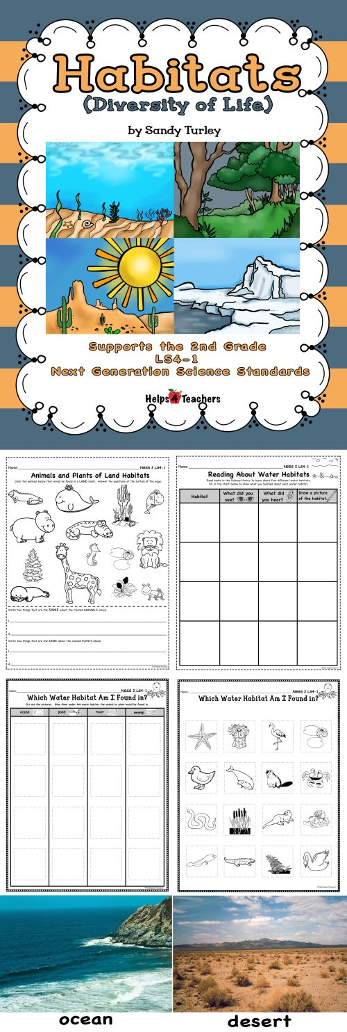 small resolution of Animals Habitat Worksheet Grade 1   Printable Worksheets and Activities for  Teachers