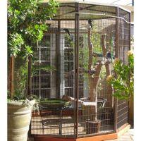 Outdoor Bird Aviaries Cages Neat bird feeder | Outdoor ...