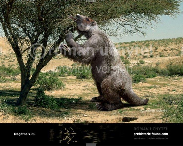 Image result for Megatherium