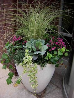Fabulous Fall Flower Containers Planters Flower And Search