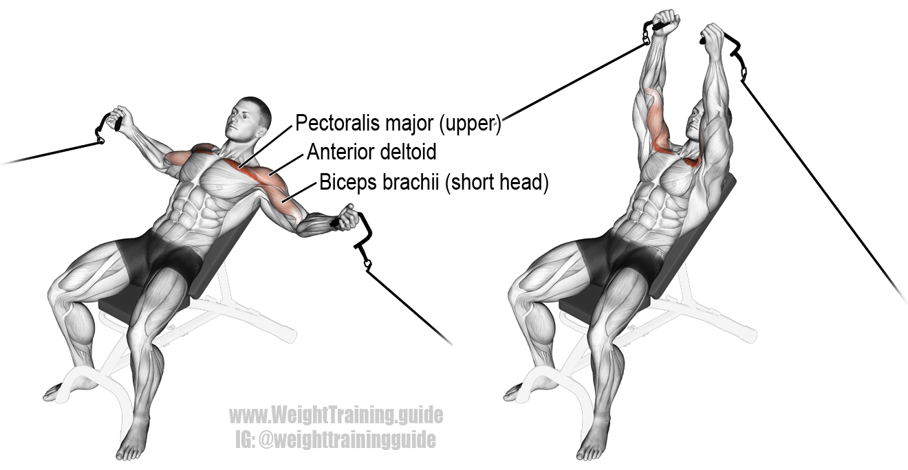 Incline cable fly. An isolation push exercise. Main