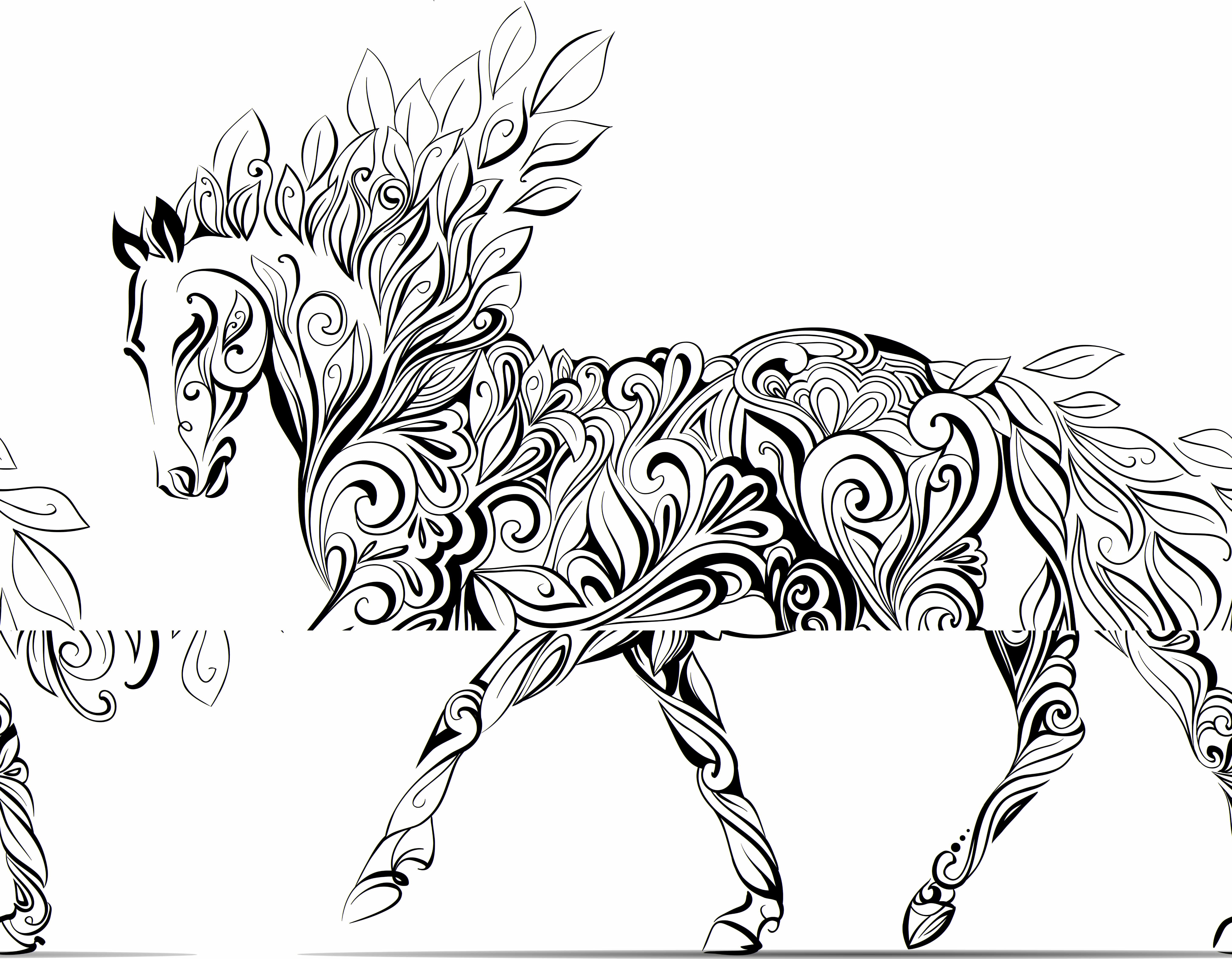 Adult Horse Coloring Pages Children A To Color Wallpapers