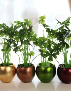 Houseplant also styling tip groen in het interieur stek green pinterest rh
