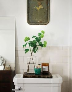Hall bathroom also tray in remodelista  branch the seems lovely rh pinterest