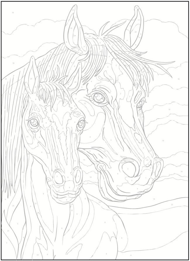 Welcome to Dover Publications / Creative Haven Horses