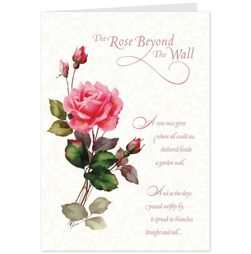 Card For Sympathy Rose Beyond Message On Flowers The Wall