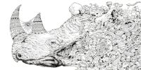 Animorphia - Coloring Pages - Animal Kingdom | Pinterest ...