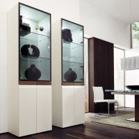 modern display cabinet | Design - Display Cabinets ...