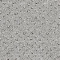 Cut and Loop Pile Carpet | colautti Bros. | Windsor ...