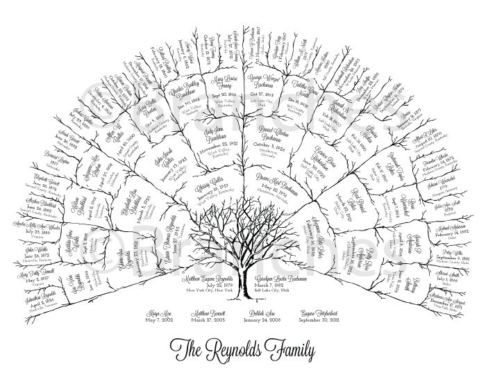 The 25+ best Family tree designs ideas on Pinterest