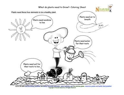 Teaching children the elements required to grow healthy