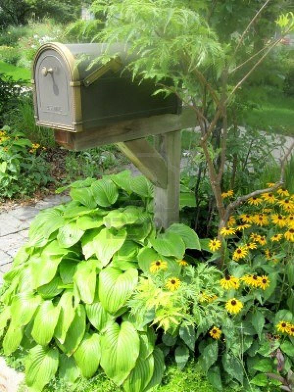 great addition mailbox.hosta