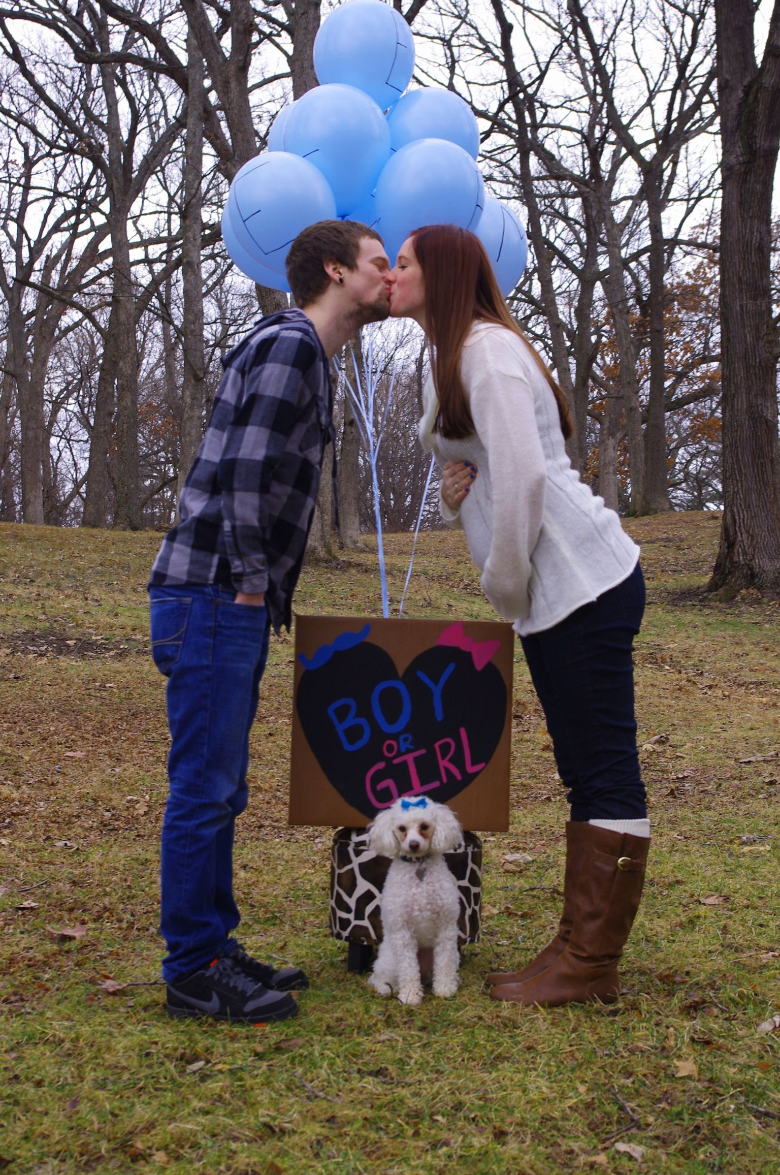 Gender Reveal With Dog My Dog Has To Be Included Baby