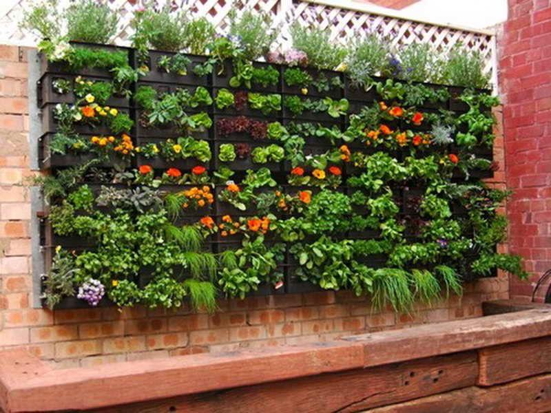 Gardening & Landscaping Vertical Herb Garden Meets Aquaponics