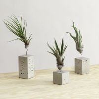 DIY inspiration - concrete + wire air plant holders | air ...