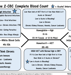 the cbc complete blood count diagram [ 1650 x 1275 Pixel ]