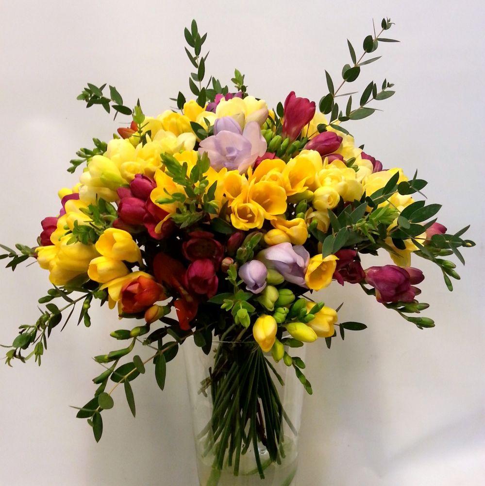 Puppy Flower Carnation Arrangements