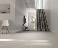 striped-carpet-stairs-hallway-parkland-twist.jpg 1,500 ...