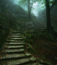 Stairway to the Old Castle, Karkonosze, Poland ~ by Karol ...