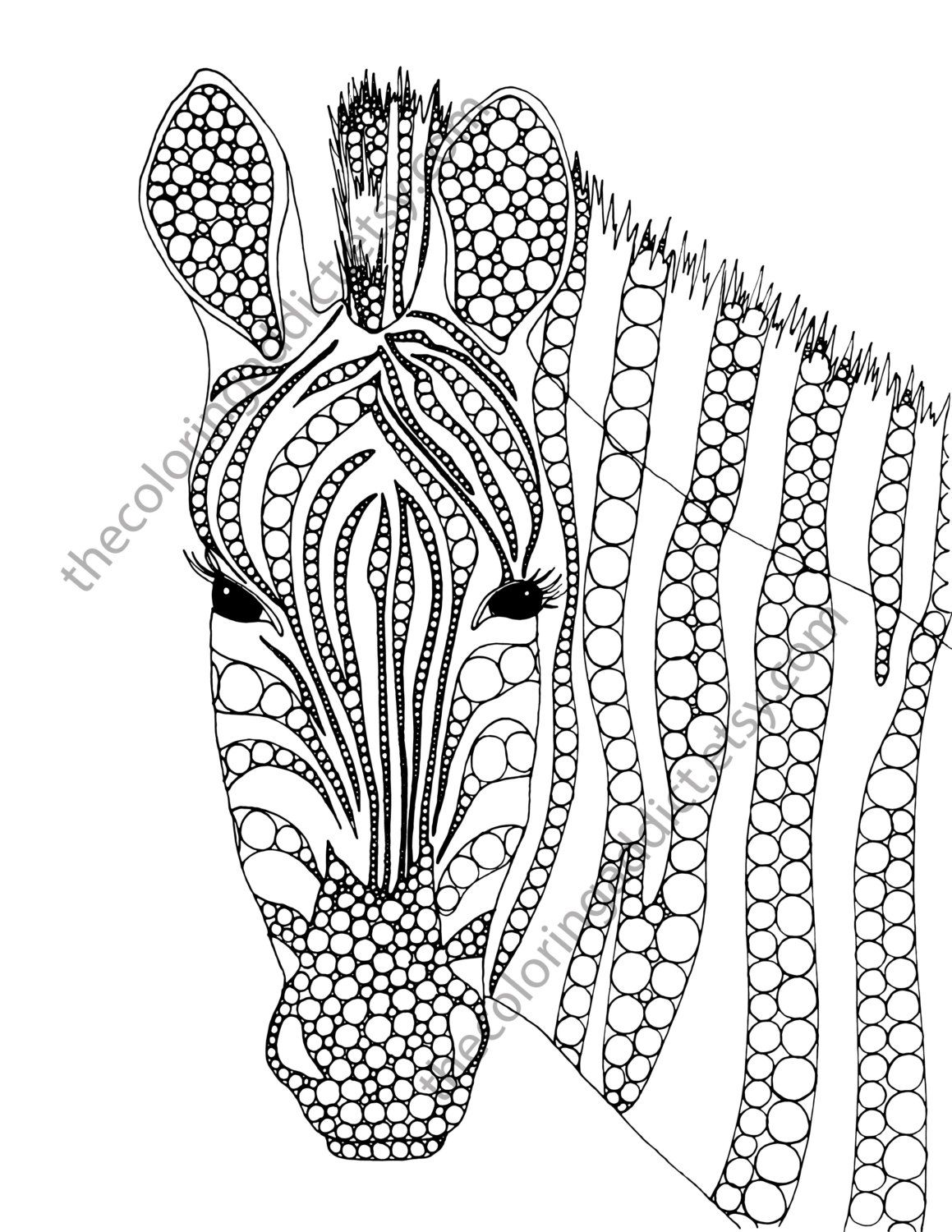 zebra coloring page animal coloring page by