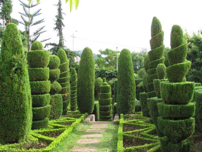 16 Marvellous Topiary Ideas Topiary Garden Topiaries And Garden