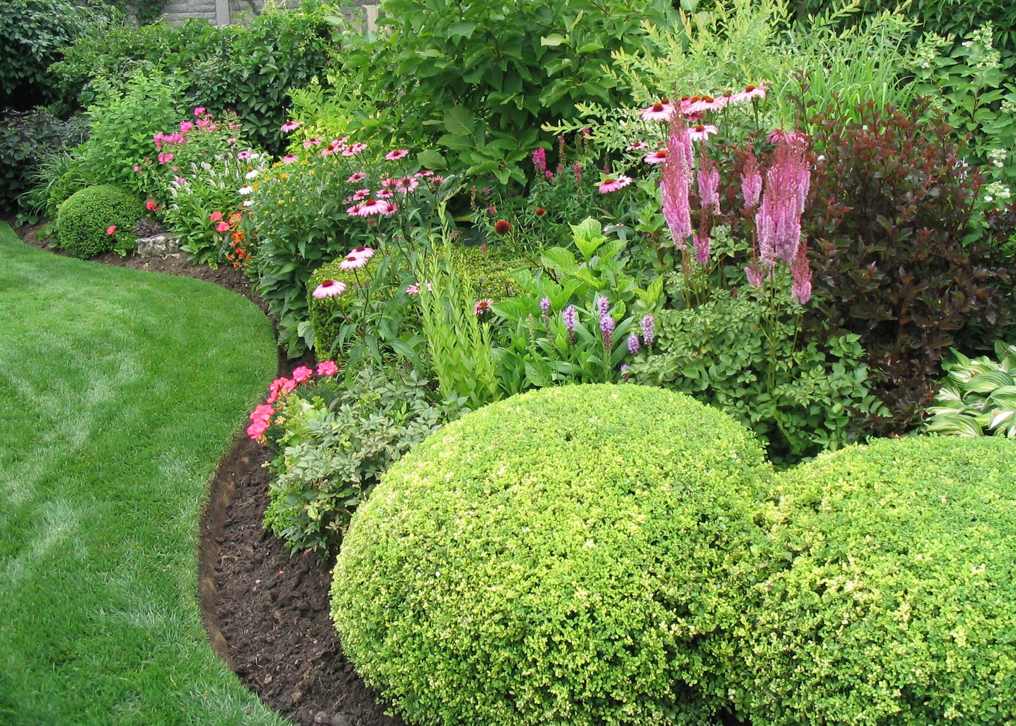 Landscaping Trees And Shrubs Ideas Design Ideas & Decors