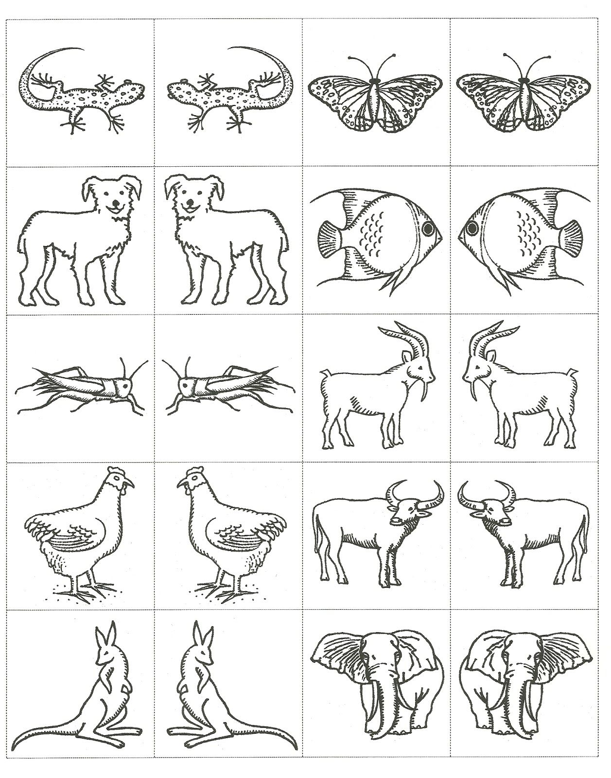 Noah S Ark Animals Coloring Pages