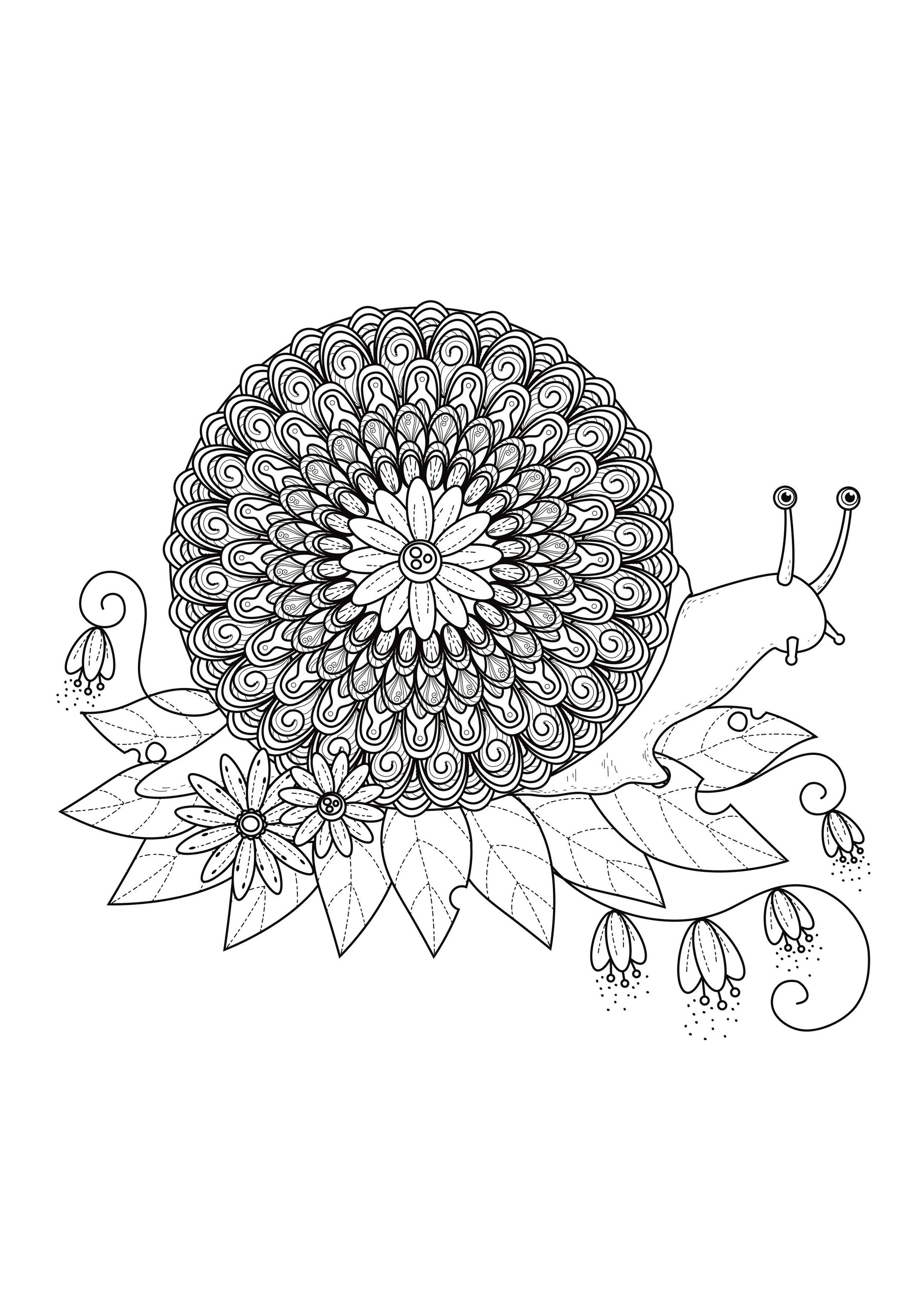 A Mix Between A Snail And A Mandala From The Gallery
