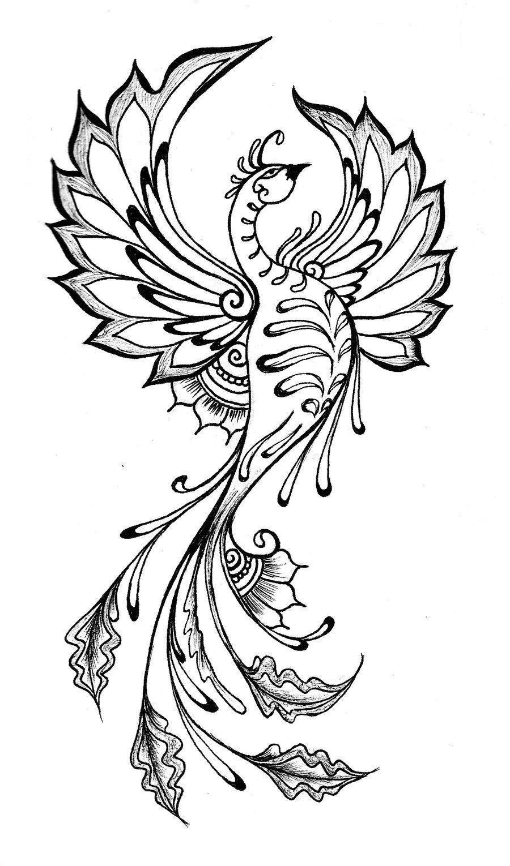 Phoenix Drawing on Pinterest