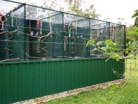 Image detail for -Building a Parrot Aviary  Tips, Advice ...