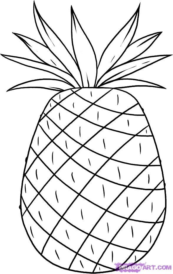 Pineapple Printable Patterns Coloring Pages