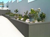 Cement rendered retaining wall | My Tropical Garden ...