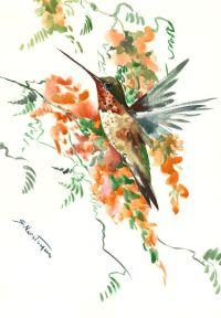 Hummingbird artwork, Original watercolor painting, 18 X 12 ...