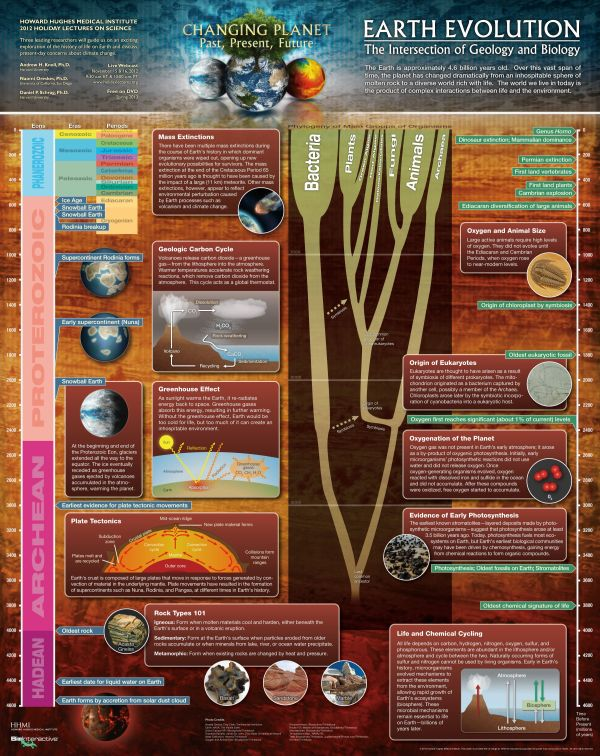 Science And Engineering Visualizations Of 2012