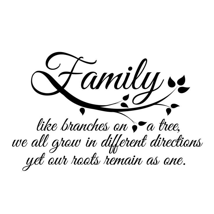 17 Best Ideas About Family Tree Quotes On Pinterest Art
