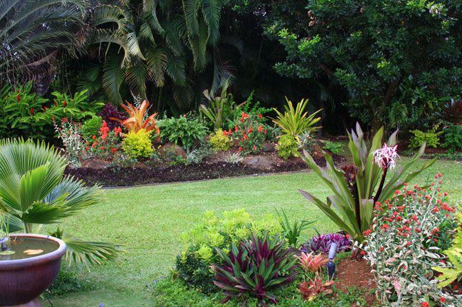 Small Tropical Garden Ideas The Gardening