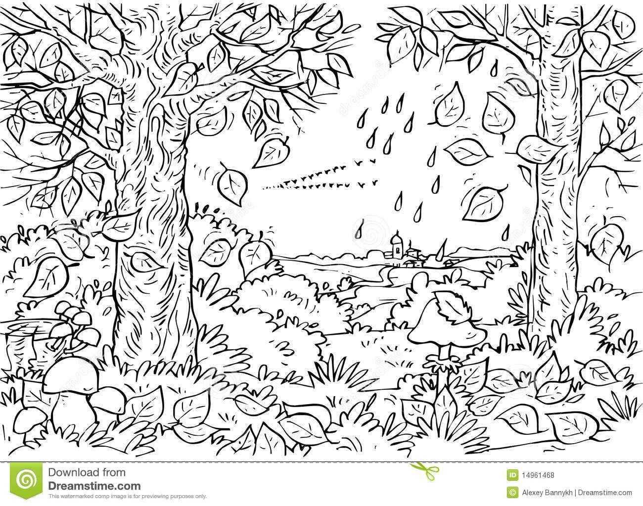 91875-deciduous-forest-coloring-pages.jpg (1300×1023
