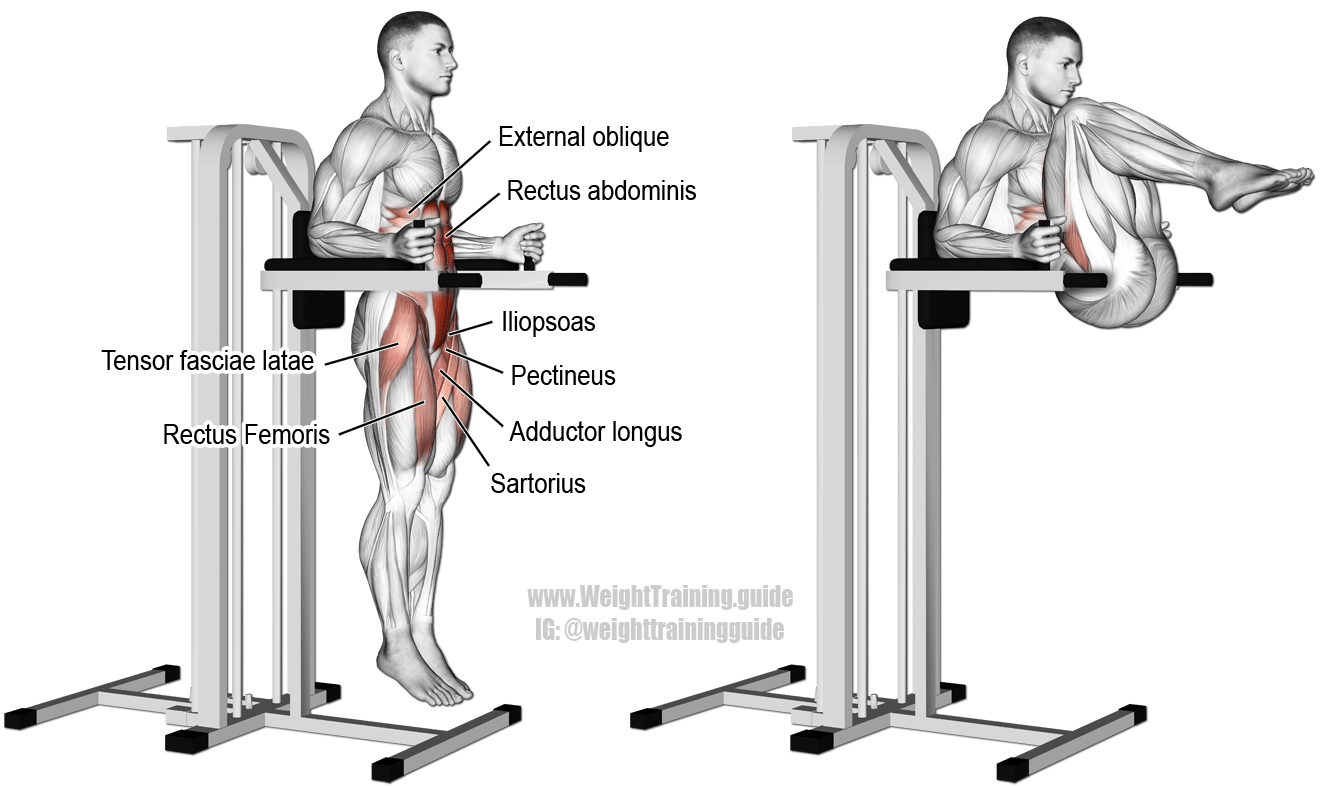 Captain S Chair Leg And Hip Raise A Compound Hip And