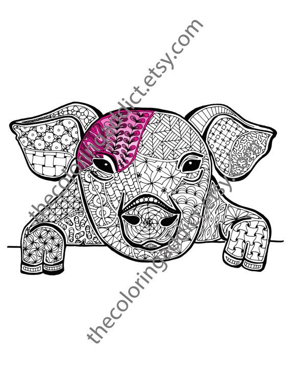 pig coloring sheet animal coloring pdf