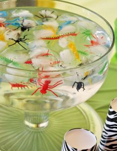 Birthday party ideas also plastic bugs frozen in ice cute perfect for  safari rh pinterest