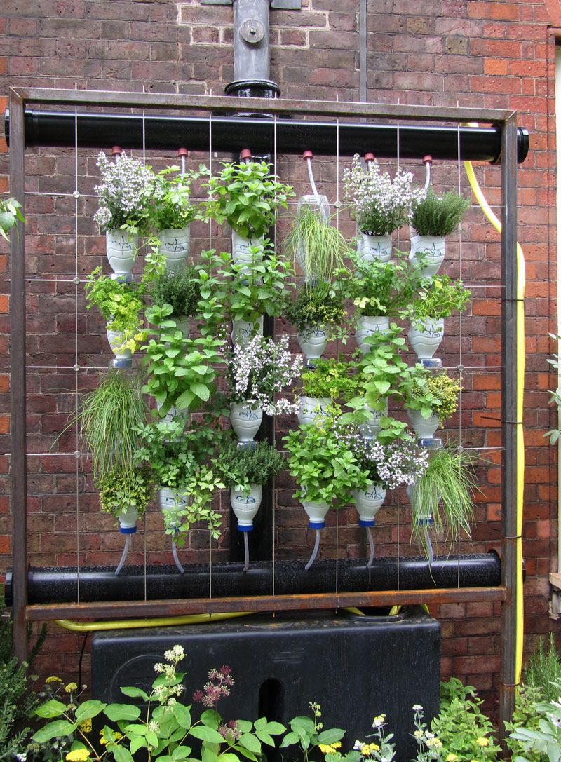 Image Detail For Vertical Garden With Milk Bottles Awesome
