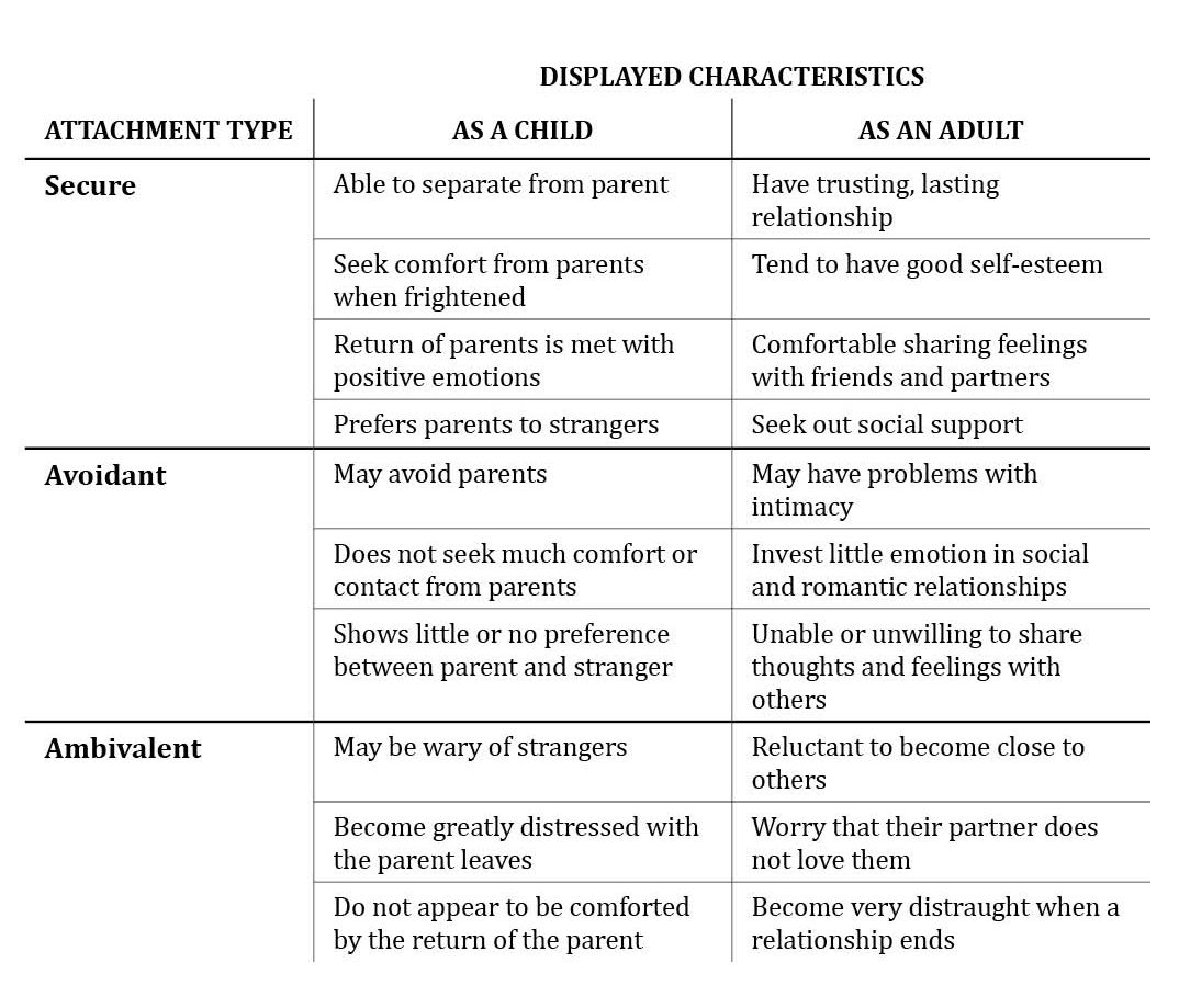 Bowlby S Attachment Theory Stages