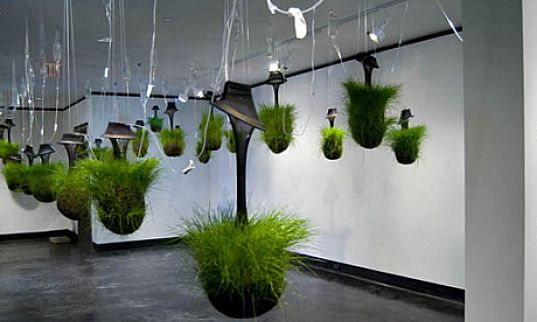 Hanging Gardens Kept Alive Through IV Drips Gardens Pods And