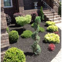 Landscaping Ideas With Black Mulch - DIY Dream Home ...