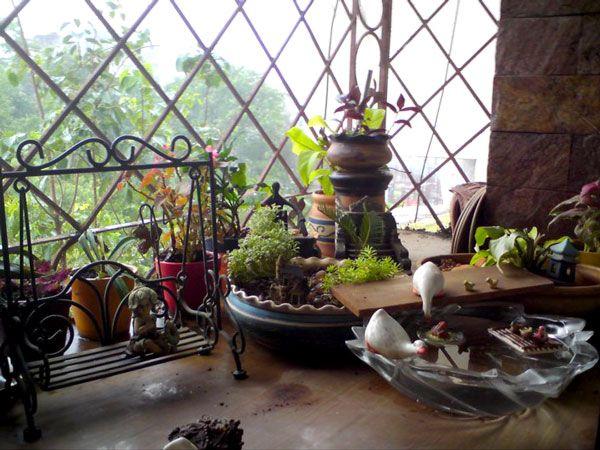 Indian Ideas Easy Garden Ideas Google Search Gardening & Back