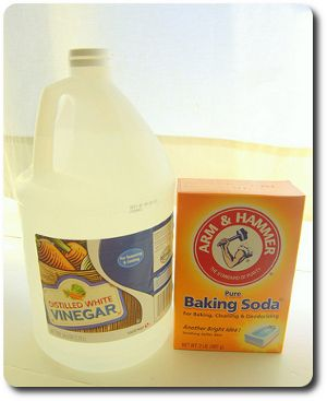 Baking Soda and Vinegar Kill Germs and bacteria including ...