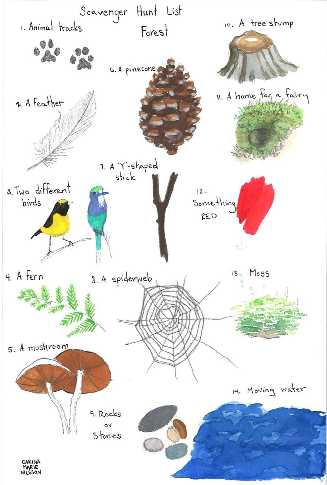 Paper Bluejay A Forest Scavenger Hunt Downloadable Illustrated Scavenger Hunt