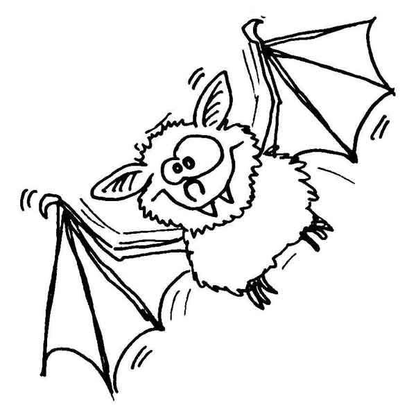 Halloween Fledermaus Ausmalbilder 863 Malvorlage Alle