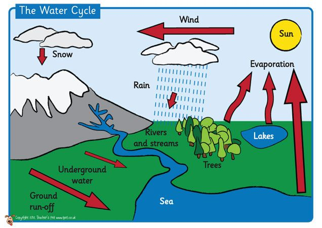water cycle diagram worksheet to label