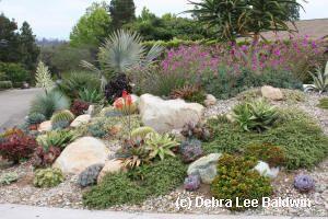 Dream Teams Portland Garden Garden Design Calimesa Dry Creek Bed